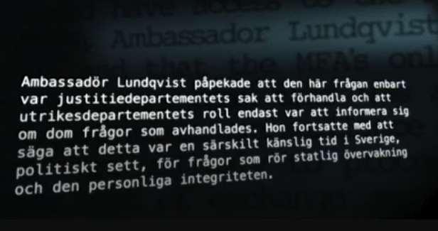 ambssador lundqvist - www.viddler.com screen capture 2012-12-28-20-58-3