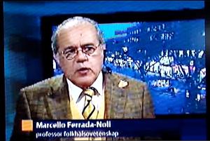 svt news gv-dal 2008
