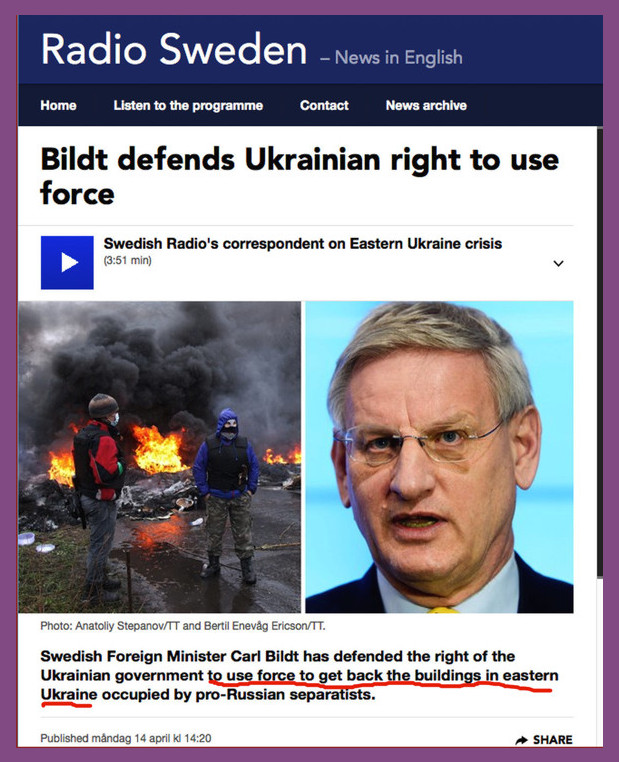 Bildt defends the right of Ukraine government to use force