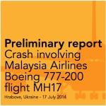 fasciimile Preliminary Report