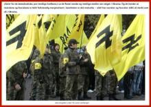 azov brigade - P. Steigan's blog